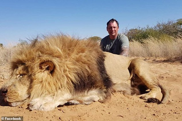 Underneath the kissing photo, they wrote: 'Hard work in the hot Kalahari sun...well done. A monster lion.' Pictured: Mr Carter with the lion