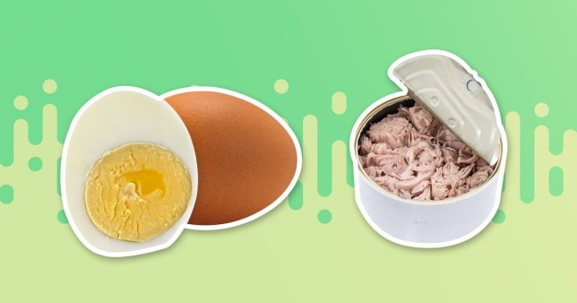 A boiled egg and a tin of tuna on a green background