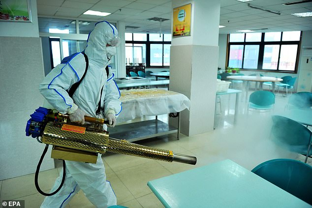 Meanwhile in China, health workers have been hosing down streets, shops and public transport with disinfectant spray to try curb the spiralling epidemic. Pictured: A worker sprays an office building in Qingdao, Shandong Province