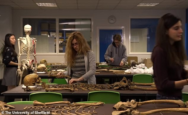 The team is sending the remains to a lab and there DNA samples will be analysed. Dr. Diana Mahoney Swales, from the University of Sheffield's Department for Lifelong Learning, who is leading the study of the bodies, said: 'Once the skeletons return to the lab we start properly learning who these people really are'