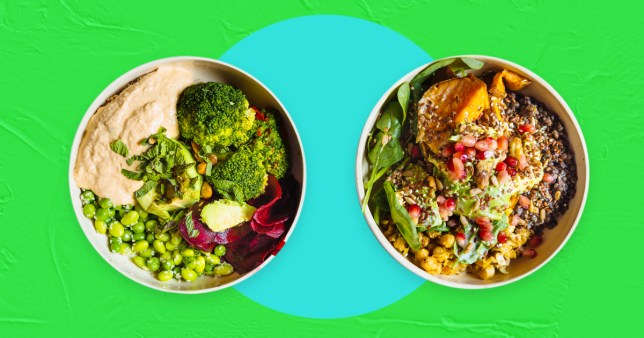 vegan food on a colourful background