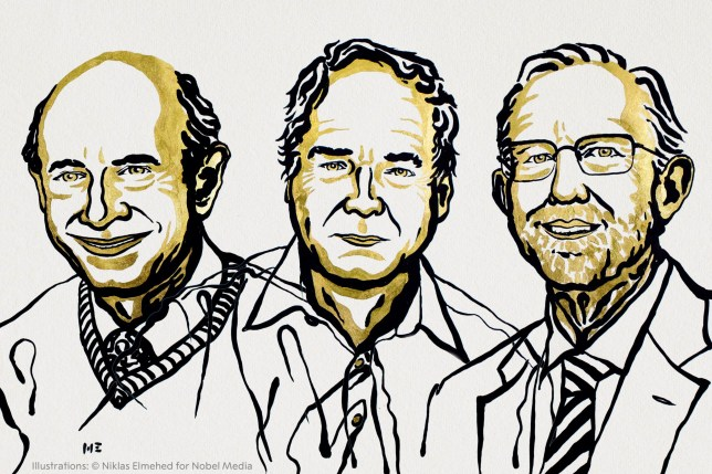 An illustration of (left to right) Harvey J Alter, Michael Houghton and Charles M Rice, the three men who have won the Nobel Prize in Physiology or Medicine. (Credits: PA)