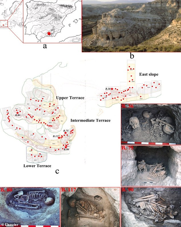 Image (a) shows geographic location of Castellón Alto site.; b. Hill where the site is located; c. Map showing the excavated burials of the site and images of the individuals analysed showing non-alimentary tooth use