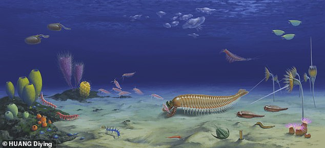 Ecological reconstruction of Kylinxia and its habitat.A type of shrimp with five eyes that swam the oceans of Earth half a billion years ago may be the 'missing link' in the evolution of arthropods, scientists claim