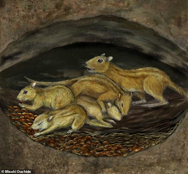 Palaeontology: 75 million-year-old burrow contains fossilised rodents snuggled-up together