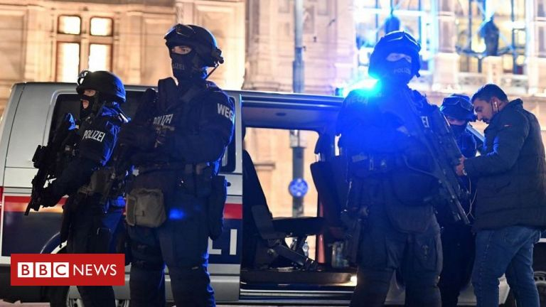 Vienna shooting: Austria launches manhunt after deadly 'terror' attack