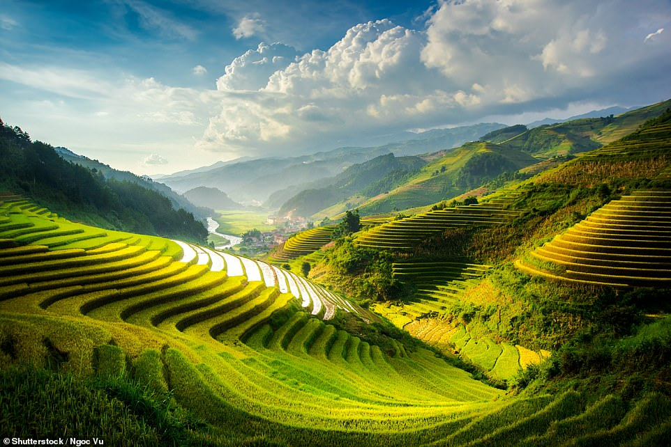 21. MU CANG CHAI, VIETNAM: This rural district of Vietnam is known for its 'magnificent Asian rice fields swirling on the slopes of velvet green hills'. Big 7 Travel explains: 'Centuries of careful cultivation have shaped what are easily some of the most beautiful rice terraces in the world'