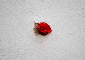 A red rose placed in a bullet hole in a restaurant wall at the site of the terrorist attack in Vienna, Austria.