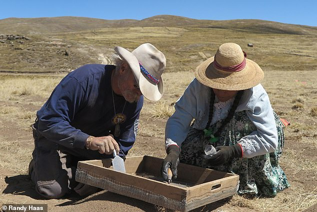 'We believe that these findings are particularly timely in light of contemporary conversations surrounding gendered labour practices and inequality,' said paper author and anthropologist Randy Haas of the the University of California, Davis. Pictured, researchers sift for remains at theWilamaya Patjxa excavation site in the Andes