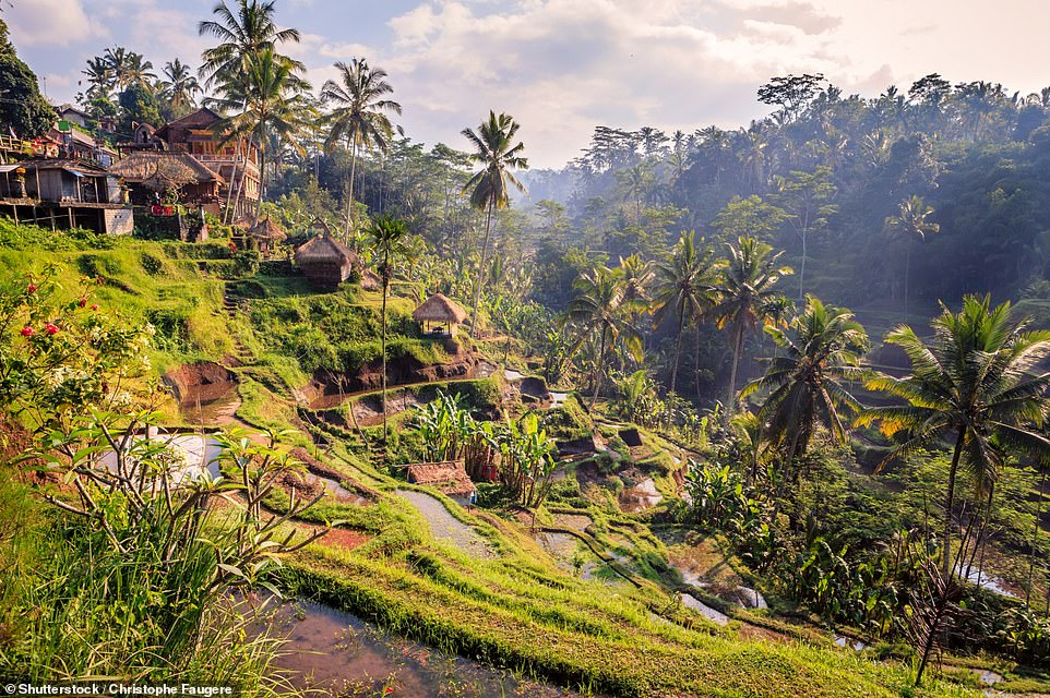 37. UBUD, BALI:  This popular town has 'ancient sacred caves, vibrant green rice terraces and royal Balinese palaces'. Big 7 Travel adds: 'It's a place that is bursting at the seams with culture, tranquil beauty and a food scene that is out of this world'