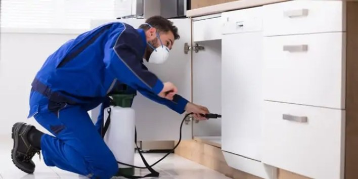 how to find Pest control near me newsacse