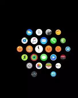 Ein Screenshot von meiner Apple Watch