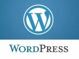 WordPress 5.0.3 veröffentlicht
