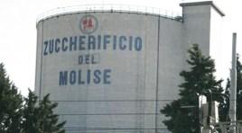 """Comitato ex lavoratori Zuccherificio del Molise: """"Il 31 dicembre festeggeremo la morte della democrazia""""."""