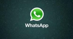 WhatsApp per Android si prepara a ricevere gli Stickers