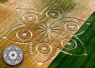 Магия на пшенице Турин
