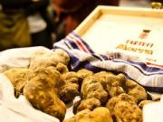 поехать на фестиваль праздник трюфеля италия пьемонт 2015