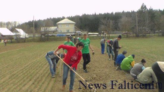 Falticeni-Politisti si elevi la plantat 1