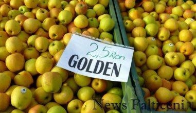 Falticeni-comert cu fructe 6