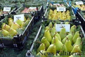 Falticeni-expo mere soiuri Solca 2