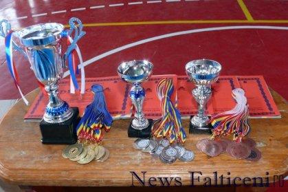 Falticeni-cupele si medaliile
