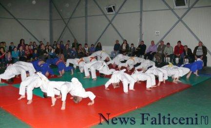 Falticeni-demonstratii judo 2