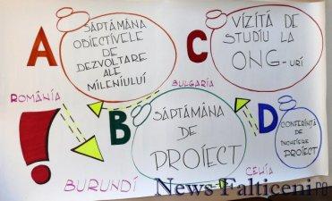Falticeni-proiect electorale