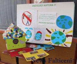 Falticeni-mesaje eco