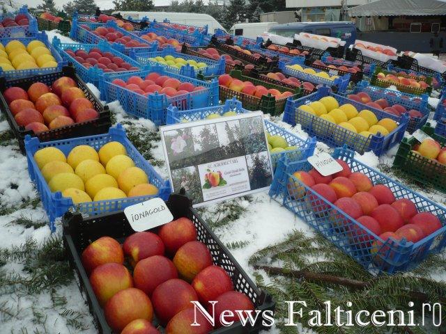 Falticeni-P1090265