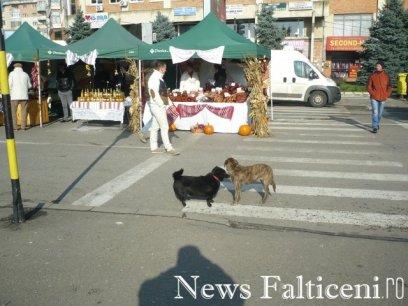 Falticeni-P1090416