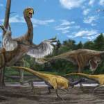 Δεινόσαυρος που μοιάζει με κοτόπουλο