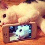Έλα να βγάλουμε μια Selfie! Τι κρύβεται πίσω από μια φωτογραφία;