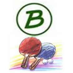 Bild zu Links zu den Ergebnistabellen 2012/2013 Vorrunde (16.8.2012 )