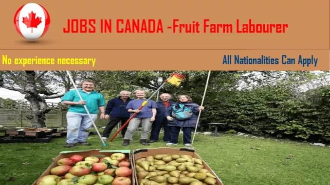 fruit farming labourer