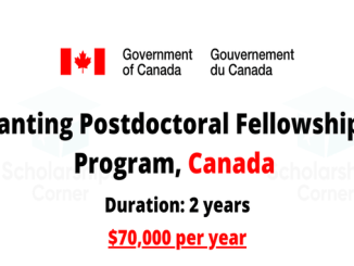 Postdoctoral Scholarships