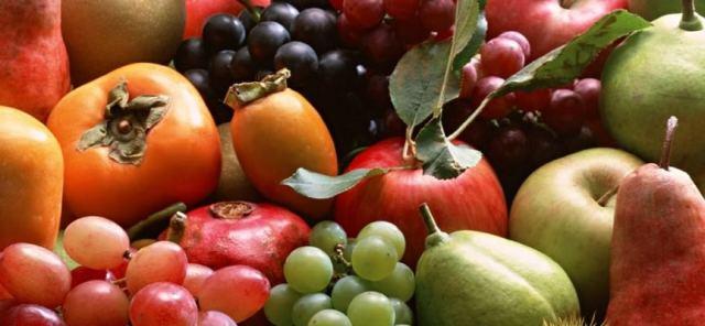Risultati immagini per chi mangia frutta è più intelligente