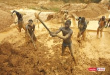 Illegal mining in led to the pollution of many water bodies