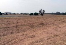 One of the SADA afforestation project sites