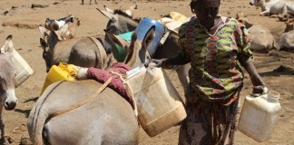 A local resident is seen with barrels of water in Baringo, northwest Kenya, March 12, 2015. Residents of Baringo County are experiencing extreme cases of hunger as a result of the long periods of drought in Kenya. According to Kenya's Devolution Cabinet Secretary Anne Waiguru, a total of 1.6 million people in arid and semi-arid parts of Kenya are in danger of dying as a result of hunger. (Xinhua/Simbi Kusimba)