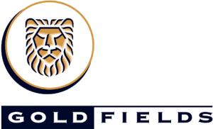 gold-feilds
