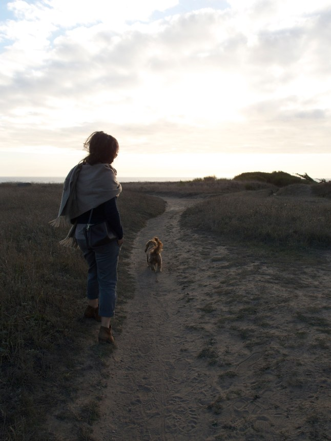 Lauren and Teddy checking out the views in Mendocino