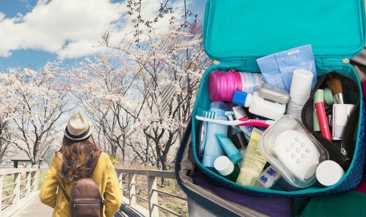 Japan: Travelling with this banned everyday item could see Britons
