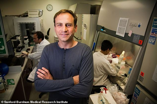 Alexey V. Terskikh, a scientist at Sanford-Burnham Medical Discovery Institute, has been leading the groundbreaking stem cell hair growth process