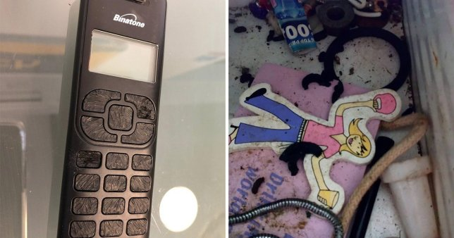 Picture of TV remote with button chewed off (left) next to picture of rat droppings filling home