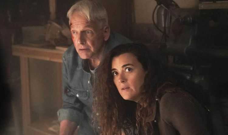 NCIS: Fans convinced of Ziva and Tony