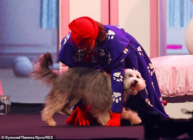 Lovely:Once again the pair delighted viewers with a vintage Mary Poppins-inspired routine that showed off the pooch's amazing moves