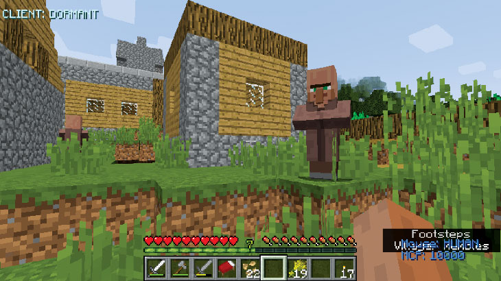a screen capture image of playing Minecraft