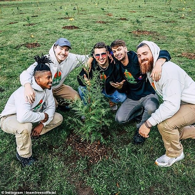 The #TeamTrees campaign — which is being undertaken with the Arbor Day Foundation — has already raised $7,937,626 (around £6,161,000) for the cause. Pictured, Jimmy 'MrBeast' Donaldson (second left) and friends planting trees