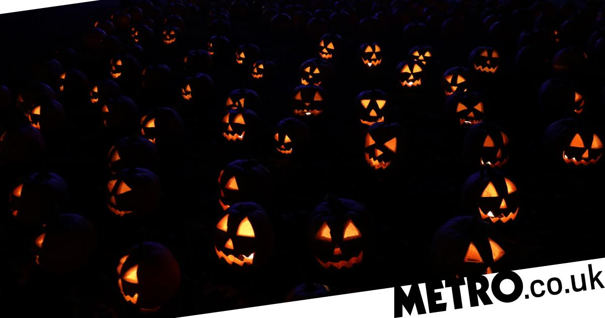Happy Halloween Jokes Memes Images And Quotes To