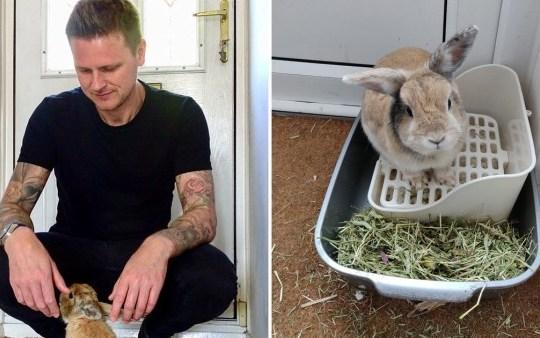 Sean and his rabbit